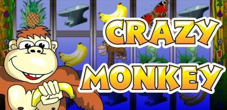 Игровые аппараты Вулкан онлайн или Секрет слота Crazy Monkey